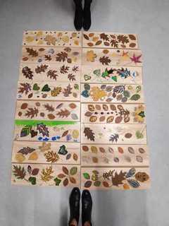 Galeria Jesienna Motylownia