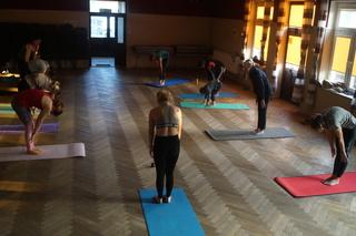 Galeria joga